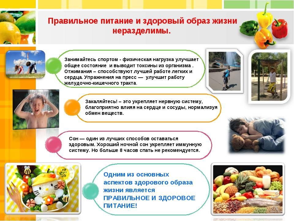 Здоровое питание: рецепты, основные правила, меню - medside.ru
