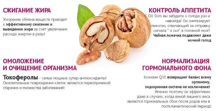 Диета для ускорения метаболизма хейли помрой: меню, рецепты   компетентно о здоровье на ilive