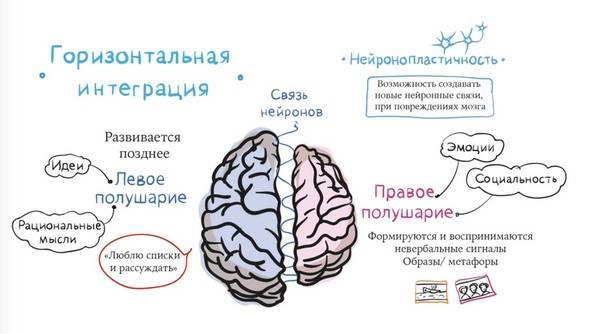 Как мысли влияют на мозг и тело. измени свой мозг - изменится и тело!