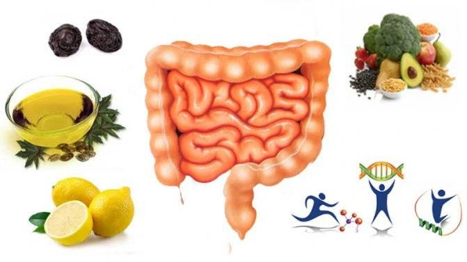 7 простых действий, которые помогут оздоровить кишечник. начинать можно прямо сейчас
