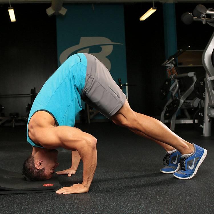 Как накачать мышцы шеи: рекомендации по работе с шейными мускулами, упражнения и программа для тренировок дома и в зале