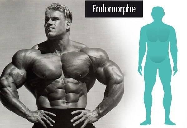 Может ли эктоморф стать мезоморфом? тренировки и питание для набора массы