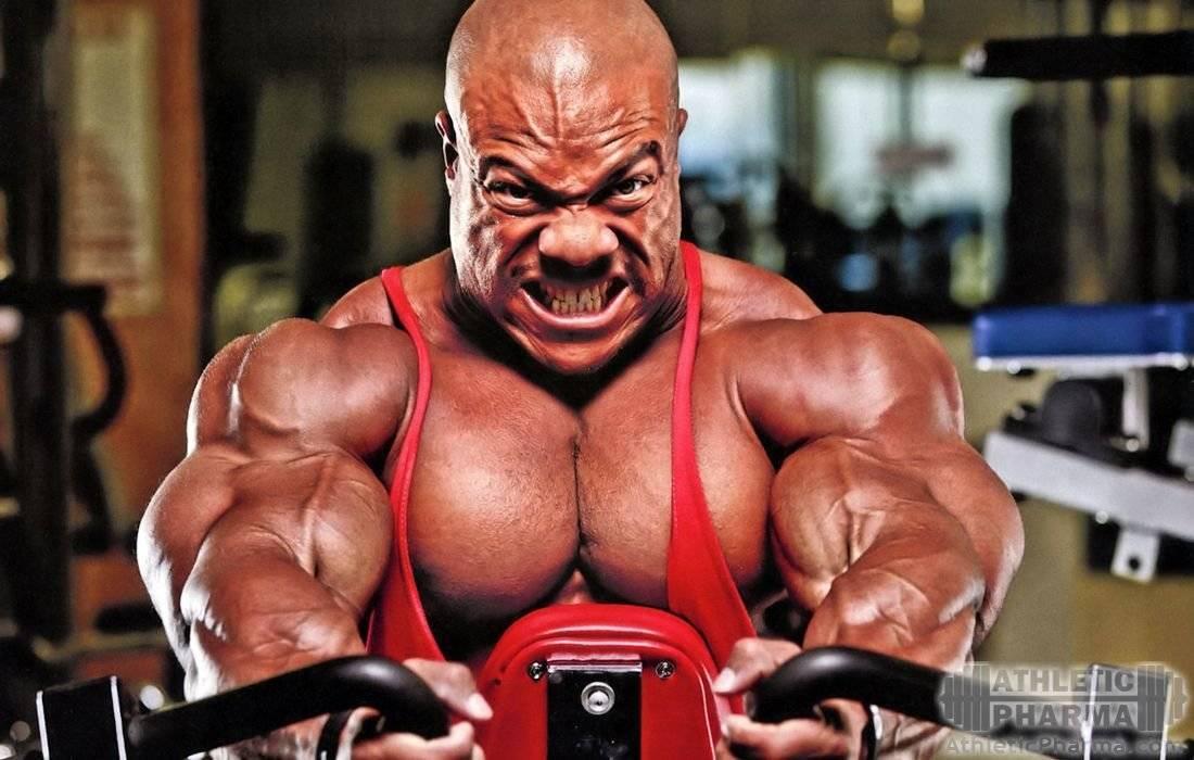 Фил хит, биография чемпиона и антропометрические данные   muscleprofit