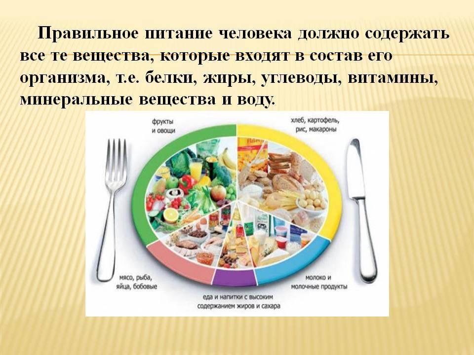 Распределение бжу по приемам пищи. как распределять калории в течение дня