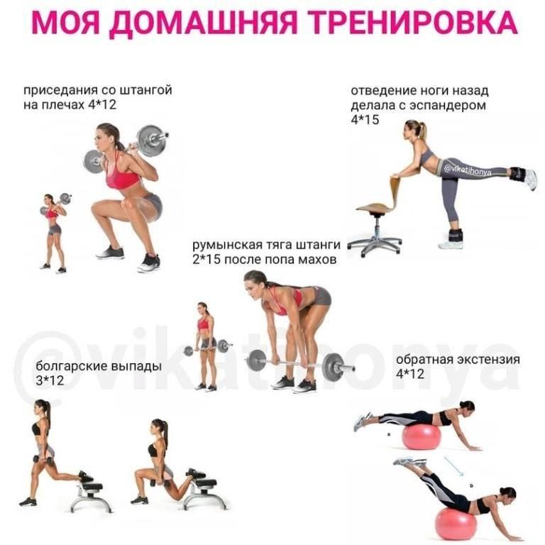 Планы круговой тренировки в тренажерном зале для сжигания жира: для девушек, женщин, мужчин