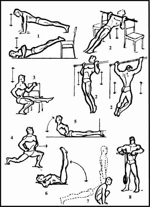 Упражнения для армрестлинга — рекомендации по программе тренировок