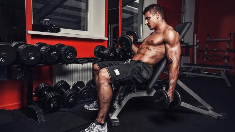 Лучшие упражнения на бицепсдля увеличения массы и рельефа бицепсов