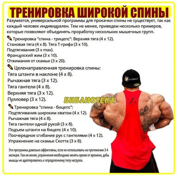 Фото бицепс 35, 40, 42, 45, 47, 50, 55 см мужчин парней, как накачать!