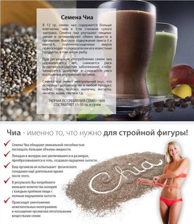 Семена чиа: польза или вред для организма?