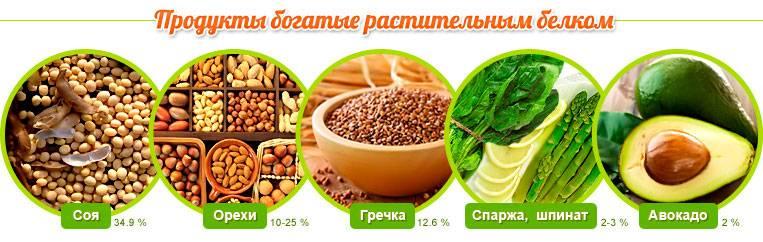 Высокобелковая диета для похудения-рецепты, польза и вред диеты.
