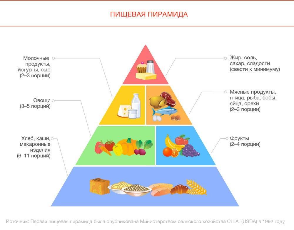 Вегетарианская пищевая пирамида: польза, вред, продукты | food and health