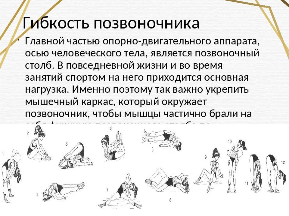 Упражнения для развития гибкости - зарядка на каждый день