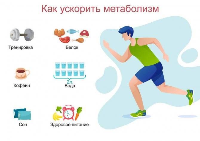 10 мифов и фактов о метаболизме: откуда берется лишний вес и как его убрать?
