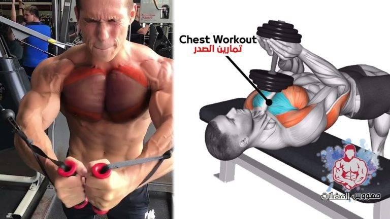 Как накачать грудные мышцы | musclefit