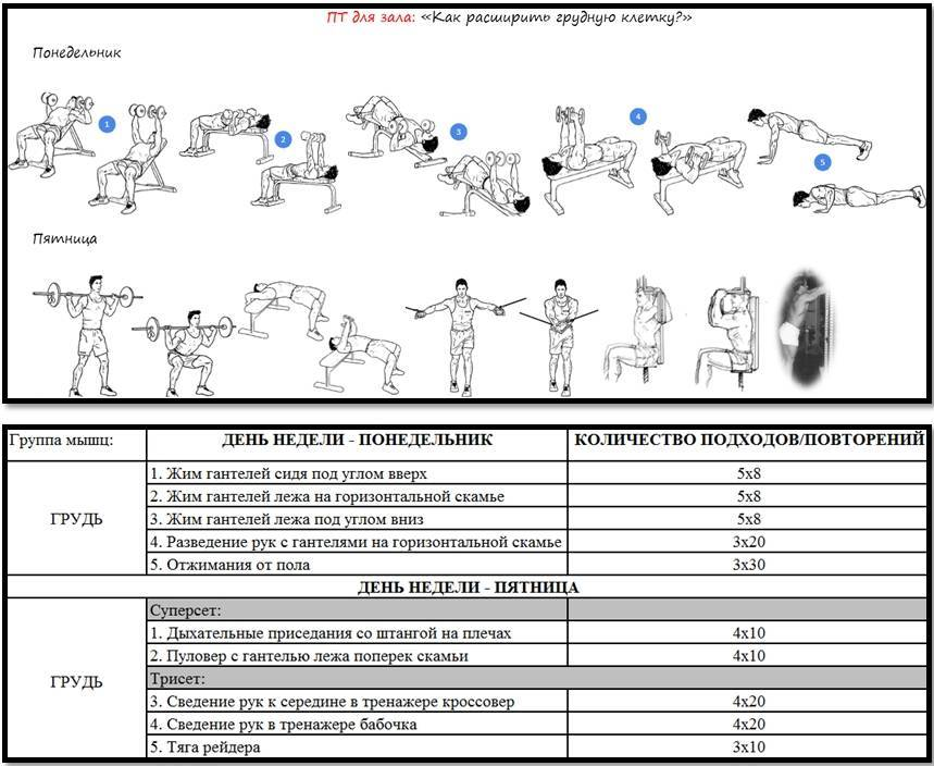 Зожник |   программа для полноценной проработки грудных мышц