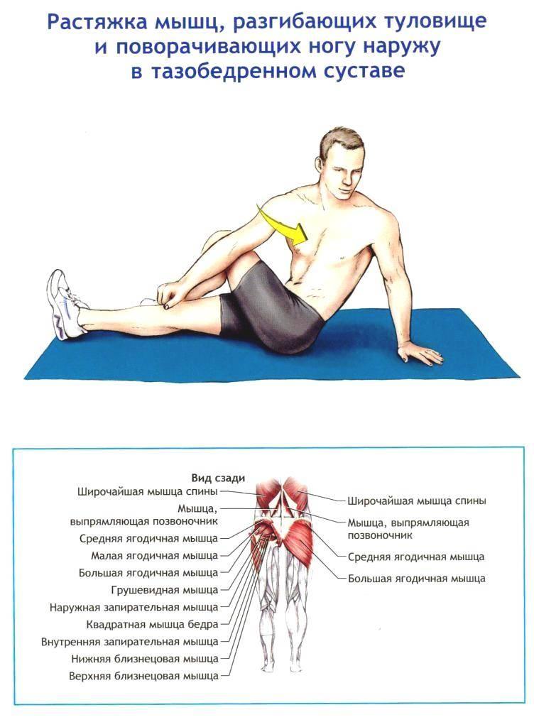 Освобождаем спину от зажимов! топ-3 лучших упражнения для растяжки
