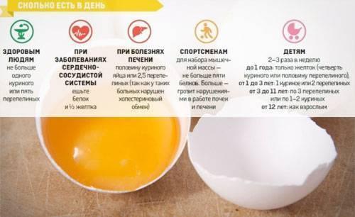 Яйцо куриное: польза и вред, калорийность, вес продукта, отличительные черты по внешним признакам