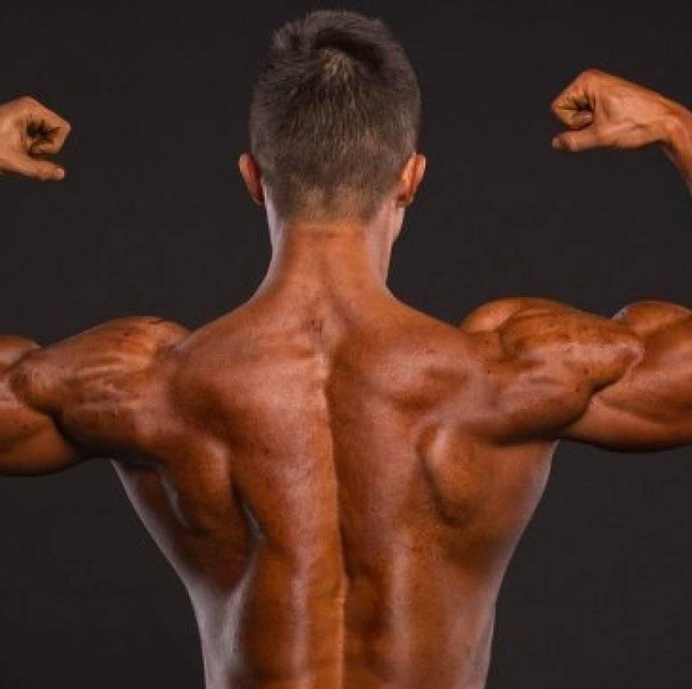 Рост мышц: как заставить мышцы расти не смотря ни на что?