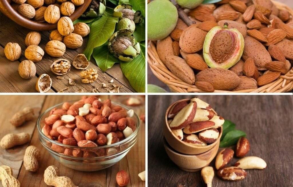 Чем полезны орехи: грецкий, фундук, кешью, миндаль…