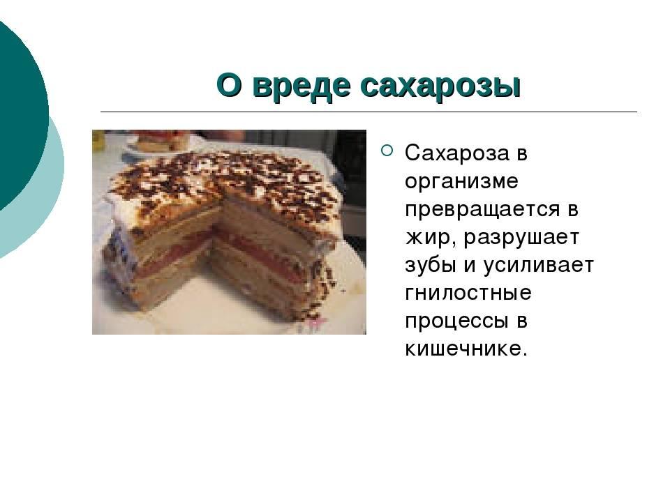 Для чего нужен жир в организме? - fitlabs / ирина брехт