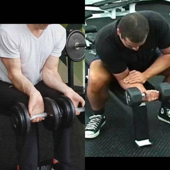 Тренировка плеч в тренажерном зале - лучшие упражнения
