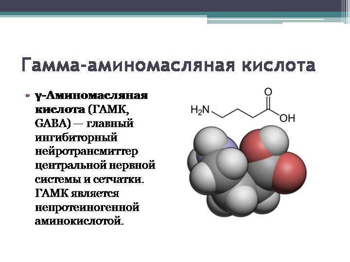 Лейцин: в каких продуктах содержится, применение аминокислоты в бодибилдинге