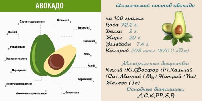 Авокадо: польза и вред для организма