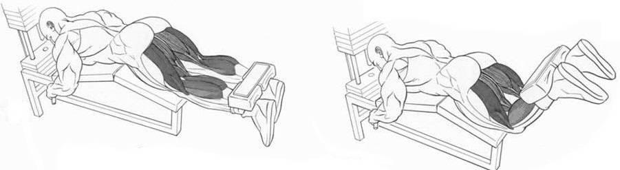 Сгибание запястий на скамье с гантелями. изучаем все тонкости и секреты.  сгибание запястий на скамье с гантелями. изучаем все тонкости и секреты.