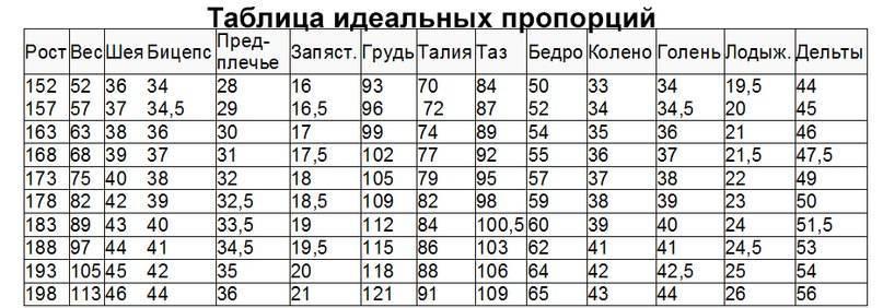 Идеальные пропорции тела мужчины - таблица!