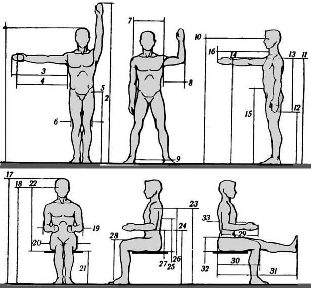 Программа тренировок для каждого типа телосложения. часть №1.