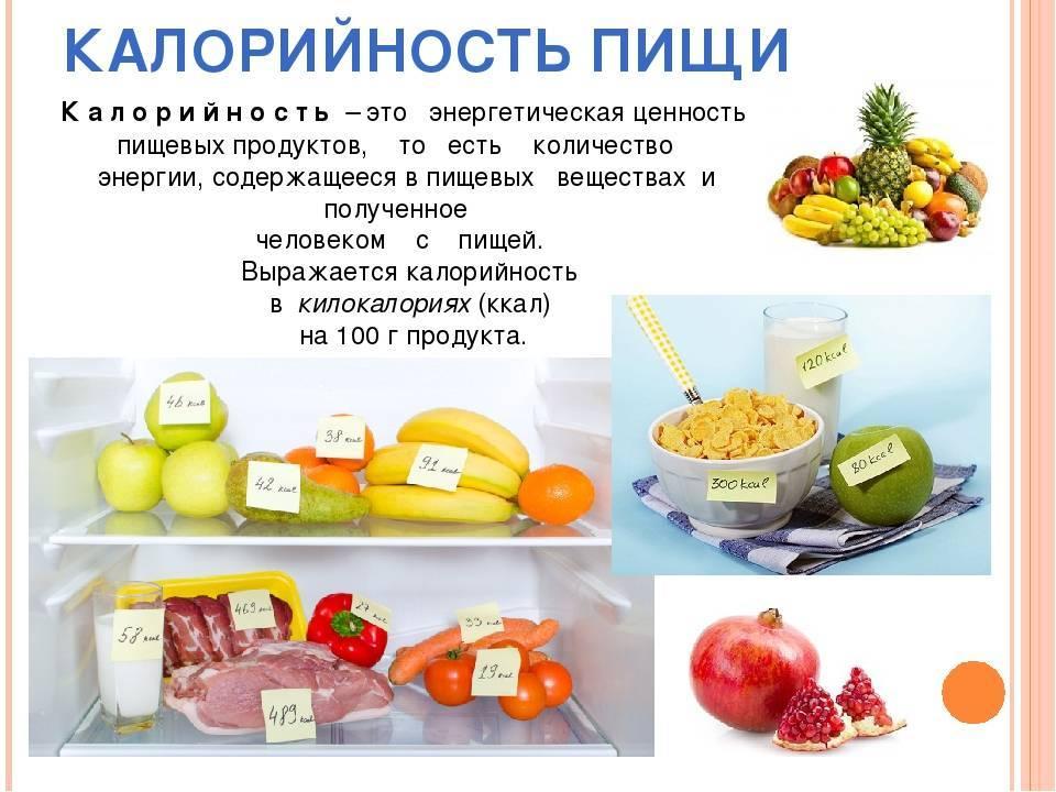 Как распределить суточные калории на приемы пищи