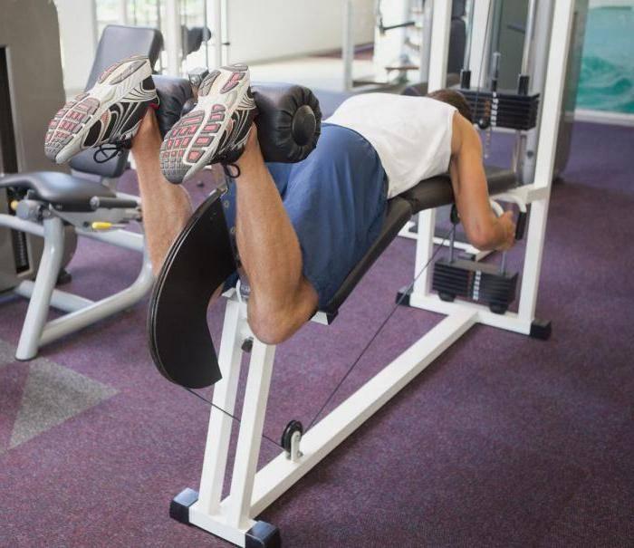 Тренировки в спортзале для мужчин: программа упражнений на все тело