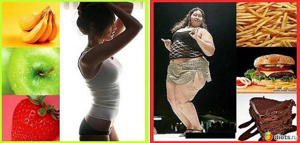 От каких жиров не толстеют