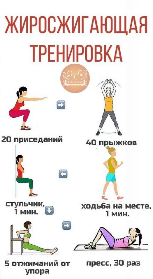 Круговая тренировка – эффективность, упражнения, физиология
