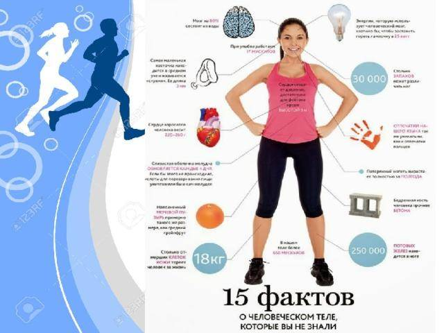 Зачем заниматься спортом: 10 причин | блог 4brain