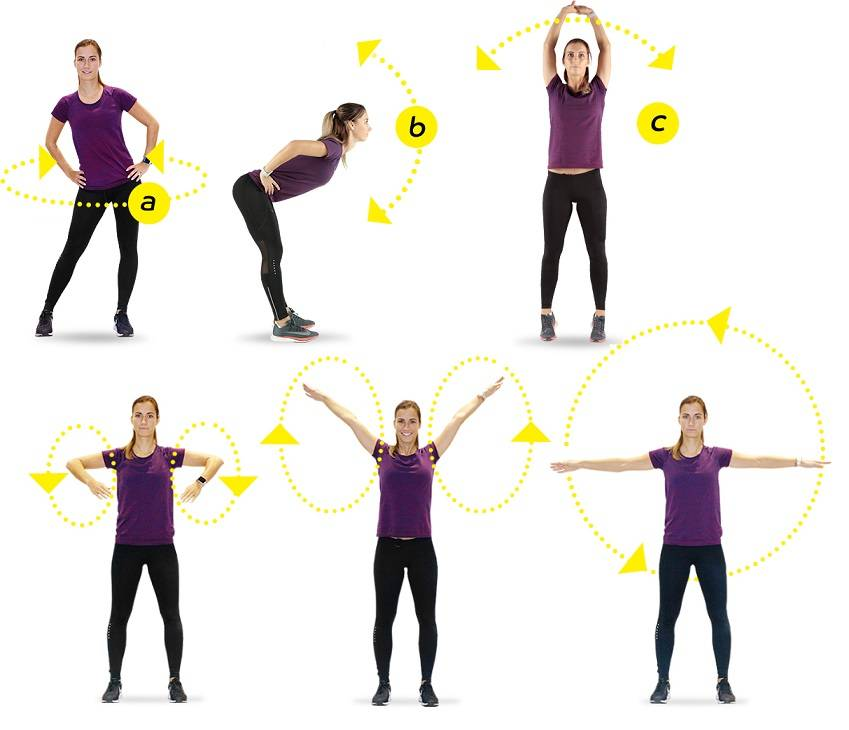 Разминка перед тренировкой в зале. упражнения   musclefit