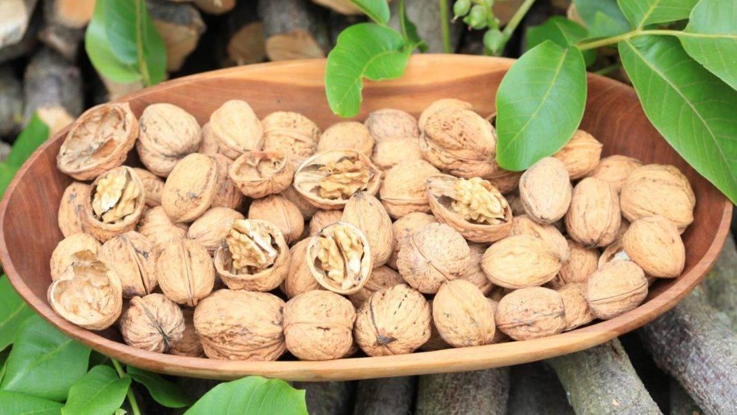 Обзор орехов, улучшающих мужскую потенцию