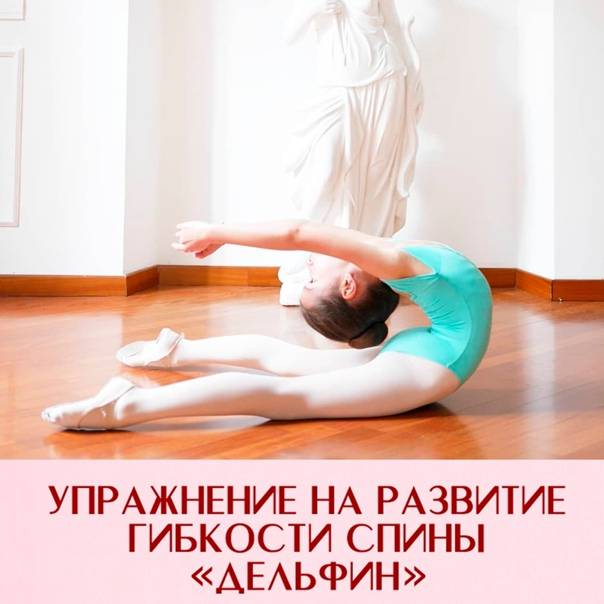 Упражнения на гибкость на каждый день. комплекс растяжки мышц.