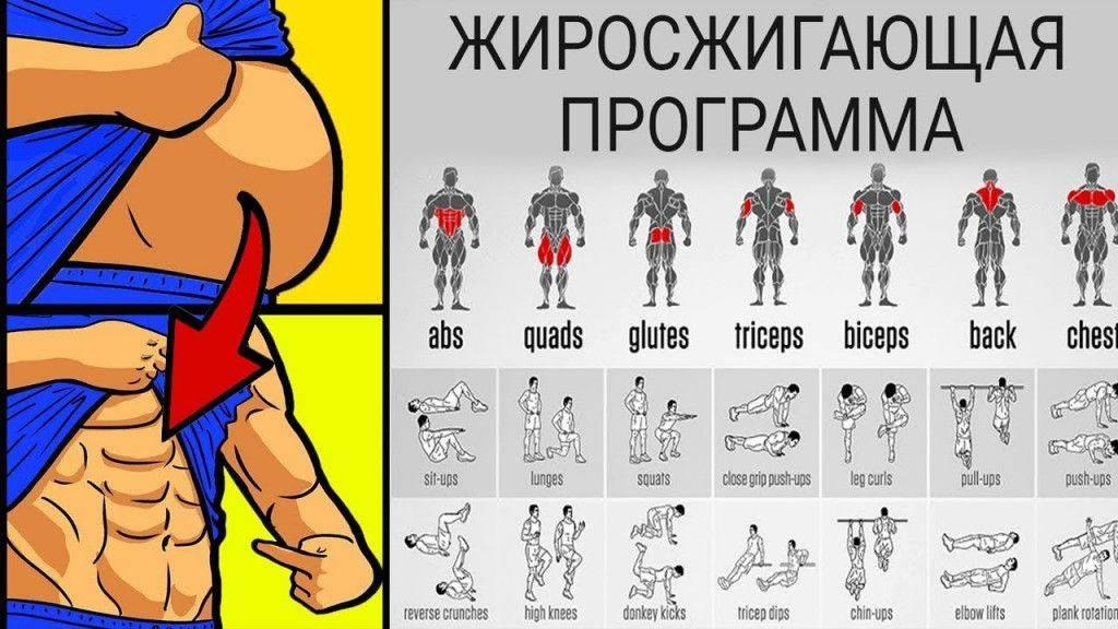 Комплексы упражнений для женщин.цель - рельеф