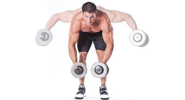Как накачать плечи - руководство эффективному тренингу дельтовидных мышц