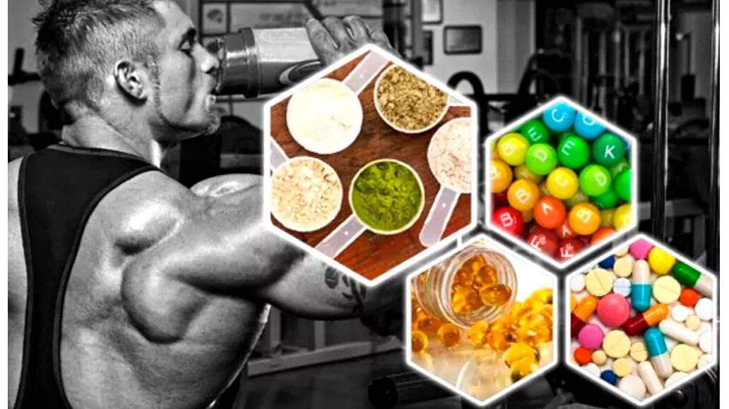 Виды спортивного питания и их назначение: 24 самых популярных спортивных добавки   promusculus.ru виды спортивного питания и их назначение: 24 самых популярных спортивных добавки   promusculus.ru