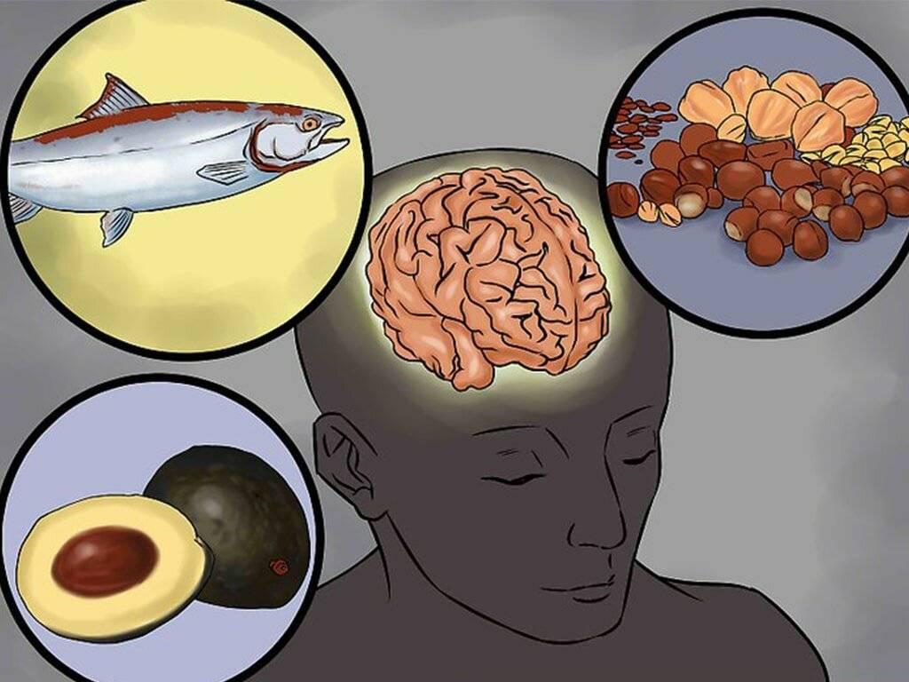 Продукты полезные для мозга и памяти при умственной работе
