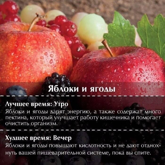 Когда лучше всего есть фрукты до еды или после. когда положено кушать фрукты, чтобы они легко усваивались? | здоровое питание