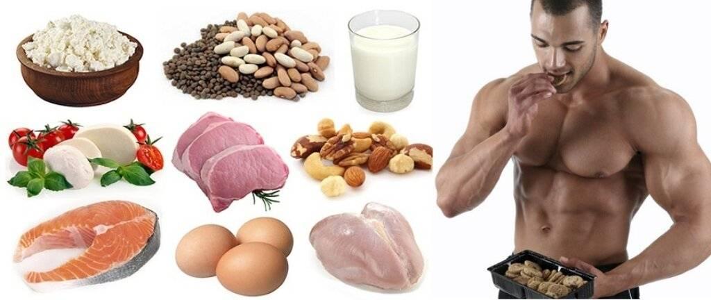 Миф 1 г/фунт (2,2 г/кг): оптимальное потребление белка в бодибилдинге
