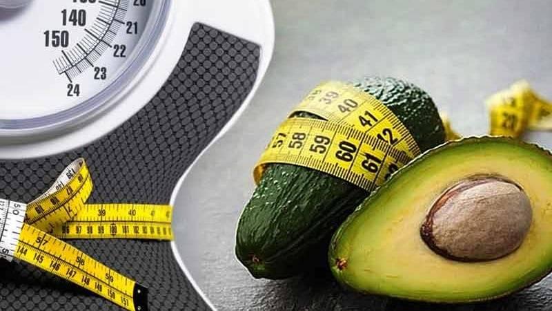 Авокадо: польза и вред, противопоказания, лечебные свойства   здоровье и красота