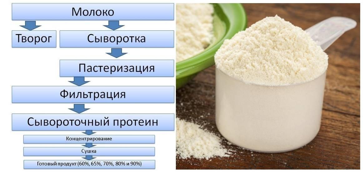 Творог в бодибилдинге: польза для набора мышечной массы, похудения, но не для сушки   promusculus.ru творог в бодибилдинге: польза для набора мышечной массы, похудения, но не для сушки   promusculus.ru