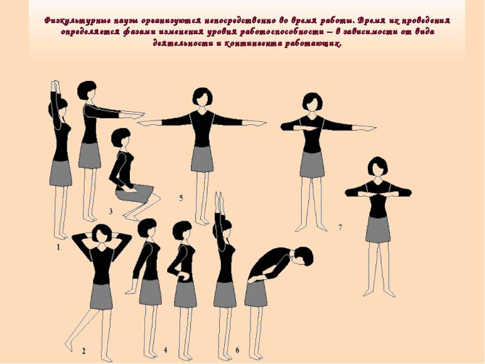 Производственная гимнастика: упражнения для офисных работников для сохранения здоровья – комплексы и типы упражнений