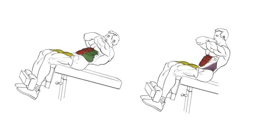 Скручивания на полу - упражнение на пресс . как правильно делать скручивания на пресс: техника выполнения