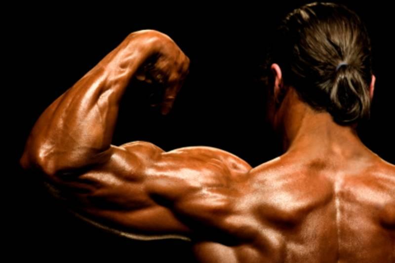 Гипертрофия мышц, какая она бывает и как нарастить мышечную массу