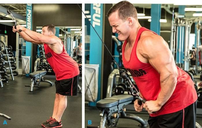 Базовые и изолирующие упражнения для мышц груди